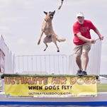Milt Wilcox with one of his dogs at the Field of Flight on Thursday.