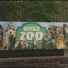 A file photo of the Buffalo Zoo