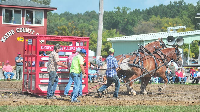 The Wayne County Fair Board said it still plans to hold its full fair Sept. 12-17, while working through the state directives.