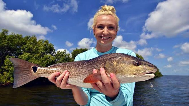 Georgia angler Diana Daley's keeper redfish was one of several caught under the mangroves in north Matlacha Pass on large live shrimp, on her Wildfly Charter with Capt. Gregg McKee.