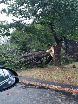 A fallen tree is seen on Birchcroft Road after a fast-moving storm rolled through Leominster on Wednesday, Oct. 7.