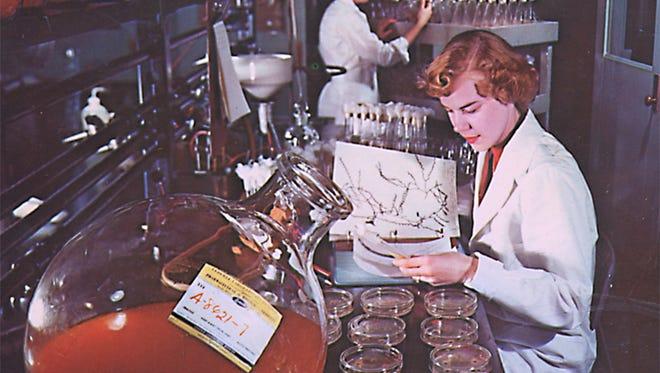 A 1950s photograph from Lederle Laboratories.