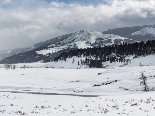 A winter's view of the Lamar Valley.