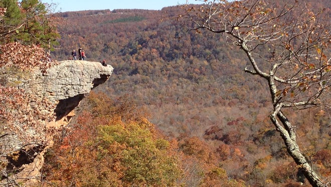 A look at Hawksbill Crag, located on the Whitaker Point Trail in the upper Buffalo River wilderness.
