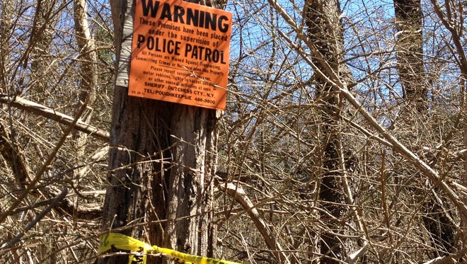 Site of the discovery of remains  in a wooded area off Maple Avenue in Patterson.