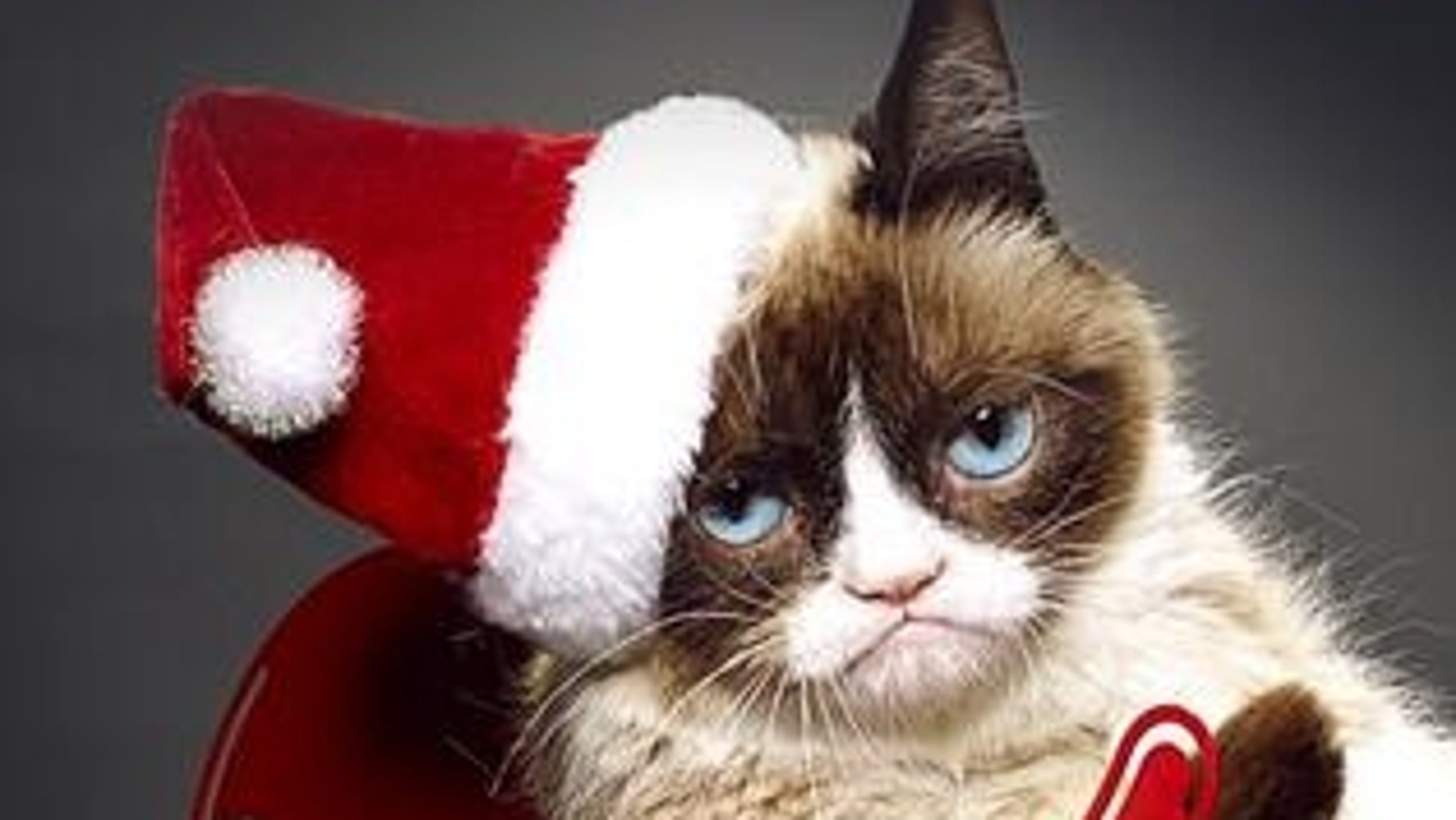 Grumpy Cat gets a voice in holiday movie