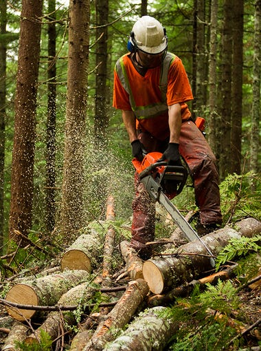 1. Logging workers > Fatal injuries in 2016: 135.9 per 100,000 workers > Total: 91 fatal injuries, 900 nonfatal injuries > Most common accident: Struck by object > Median annual wage: $37,590  Logging is physically very demanding, and like commercial fishing, the location of the work is primarily outdoors and often in remote areas, far from medical aid. The most common accident is when a worker is struck by an object, such as a log or falling branch. Logging workers also deal with dangerous machinery such as harvesters and chainsaws. There were nearly 50 more fatal injuries per 100,000 logging workers in 2016 than the second most dangerous job. Based on the occupational fatality rate, logging is the most dangerous job in the country and about 38 times more dangerous than the typical job.