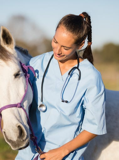 1. Veterinarians16 yr. change in share of women: 25.1 ppt.2016 female workers: 38,885 (59.1% of total)2000 female workers: 15,140 (34.0% of total)Median earnings: $90,063No job has become dominated by women faster than veterinarians. The number of women employed as veterinarians has more than doubled since 2000, resulting in a 25 percentage point increase in the share of female vets. Not all jobs on this list pay well. But with educational requirements as or more rigorous as physicians for humans, the median earnings for veterinarians of $90,063 is one of the highest in the nation. The rising share of female animal doctors mirrors the longstanding trend of women entering science and engineering occupations at higher rates.
