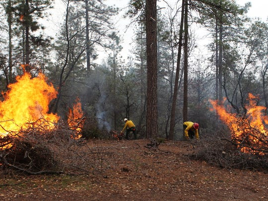 Fire crews with the Shasta Trinity National Forest, Shasta Lake Ranger District, Pat Bell left and Brian Buckner,  conduct a prescribed fire pile burn in early March 2016 in Jones Valley near the Silverthorn Resort. The Trump administration put the Forest Service is under a hiring ban, including for seasonal firefighters.