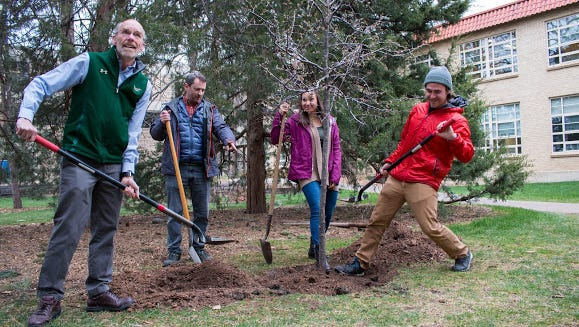 """CSU's student chapter of the Society for Ecological Restoration launched its """"1 million trees"""" campaign April 20 with the planting of a seedling just south of the Forestry Building."""