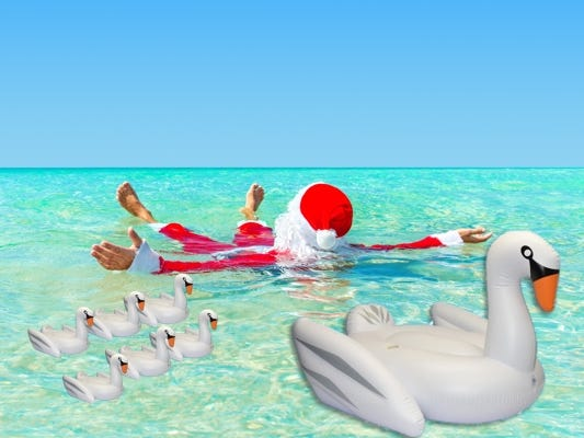 On the 7th day of Christmas, Insider gave seven swans of swimming to their members!