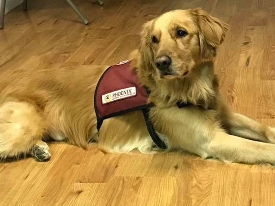 A vendor showfrom 11 to 4 p.m. Saturday, April 28 ate American Legion Post 25 in Milltown will benefit Rebecca's Anchor, with100 percentof the proceeds going toward PAD (Phoenix Assistance Dogs of Central PA) Lincoln.