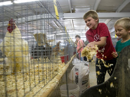 Shortie Hunt, left, and Remington Hunt look after their chickens and clean their cages together Tuesday during the poultry show at the 2017 San Juan County Fair.