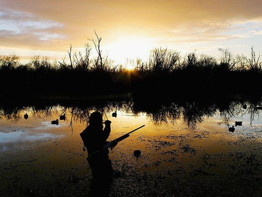Duck Shooting Season In New Zealand