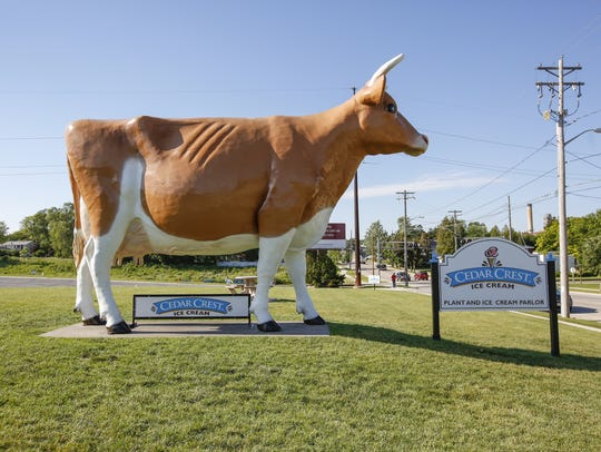 Bernice the cow stands tall and proud June 21 outside