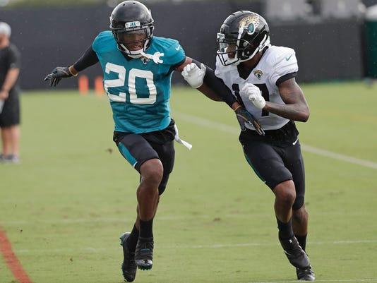 Jaguars_Fight_Football_05212.jpg