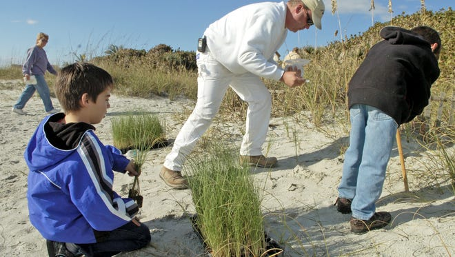 02/07/2009--Photo by Craig Bailey/Florida Today--Ryan Barr, 9, his father Tim and brother Jackson, 7, plant sea oats on the beach in Cape Canaveral.