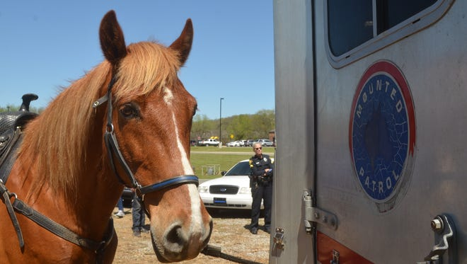 Hendersonville police horse Sunny waits by his trailer at the site of his future home off Drakes Creek Road.