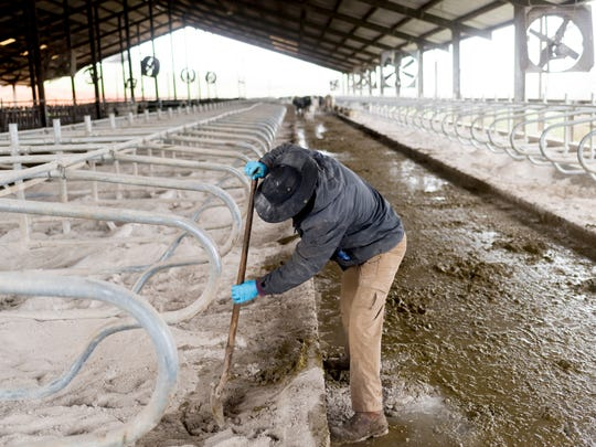 When he has a free moment, Watson cleans up the stalls in the dairy barn on his dairy farm in Sweetwater, Tennessee on Monday, March 12, 2018. Watson received a letter of termination from Dean Foods and has 90 days to find a new producer.