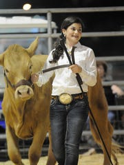 Brianna Blocker, 11, shows her winning 810-pound heifer. Among many varieties of livestock, cattle and their young handlers were judged at the 2016 Collier County Fair.