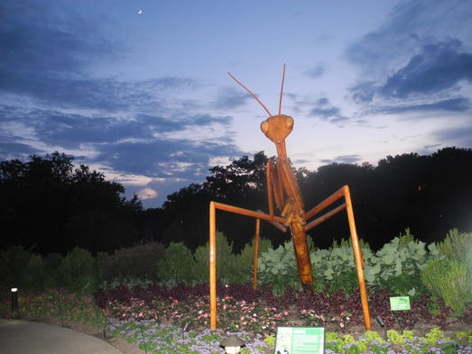 "Guests toured the gardens where David Rogers' ""Big Bugs"" were on display during Frolic with the Big Bugs at Cheekwood, a Horticulture Society of Middle Tennessee fundraiser for Cheekwood. There are 10 displays throughout the gardens, pictured here is Parying Mantis."