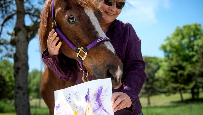 Nancy Bailey holds up a painting Clifford the horse made during a demonstration on Thursday, May 24, 2018, at Bailey's home in Charlotte. Clifford, a 27-year-old Morgan horse, creates abstract paintings by using his lips to push a sponge covered in paint across the canvass. Bailey, who is an artist herself, takes Clifford to events for kids and adults to demonstrate the horse's artistic ability.