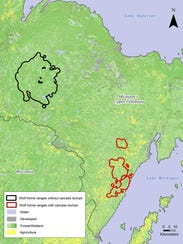 [Image: 636626270324341703-animals-wolves-behavi...dy-map.jpg]