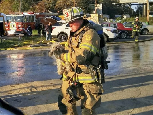 """Shane Shifflett - courtesy photo A firefighter carries """"Muzzy"""" after a fire Thursday at a Chambersburg home."""