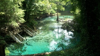 If you're looking to cool off in Florida, head to Madison Blue Spring. The state park swimming hole has a limestone basin, creating a bright blue-green effect on the water. The spring is along the west bank of the Withlacoochee River and is indeed a popular spot for swimming.