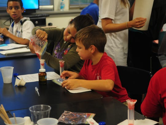 Students work together to extract DNA from a strawberry
