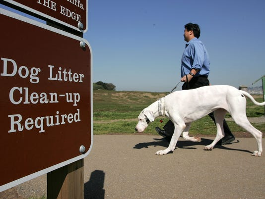 San Francisco To Convert Dog Waste Into Alternative Energy