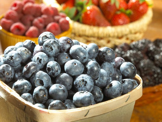 Close-up of blueberries in a bucket