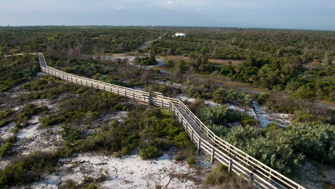 If crowded festivals aren't your thing, explore Jonathan Dickinson State Park in Hobe Sound instead.
