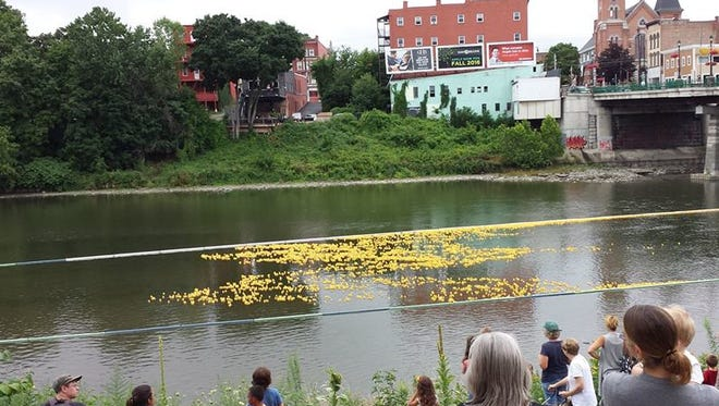 Thousands of ducks float down the Chenango River at the Broome County Humane Society's annual Duck Derby.