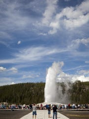 Old Faithful in Yellowstone.