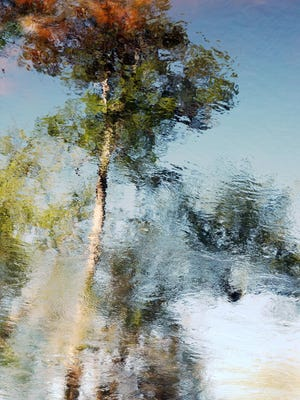 """Explore the impressionistic works of North Carolina artist Paul Wingler when his """"Reflections and Motions of Photography"""" opens with a First Friday Gallery Hop reception from 6 to 9 p.m. Friday at Venvi Art Gallery, 2901 E. Park Ave. Wingler's """"A Touch of Autumn"""" is shown here. The reception is free and open to the public. Visit www.venviartgallery.com."""