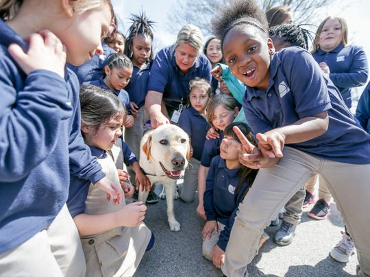 Maynard West, a lab-golden mix and the newest staff