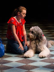 """Kylie McVey as Opal, and Bowdie, the mixed poodle breed, as Winn Dixie in Delaware Theatre Company's 2015 production of """"Because of Winn-Dixie."""""""