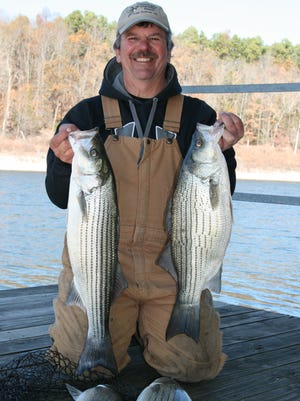 Lou Gabric shows off some nice stripers caught in Float Creek using a 1-ounce white spoon on a recent fishing trip on Norfork Lake.