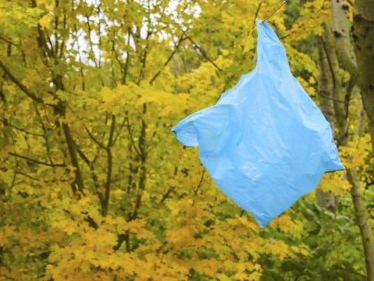 Plastic bag stuck on tree