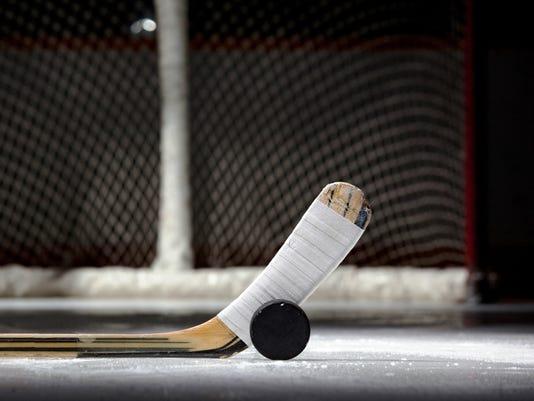 636179690445543233-ice-hockey-stick-puck-net.jpg
