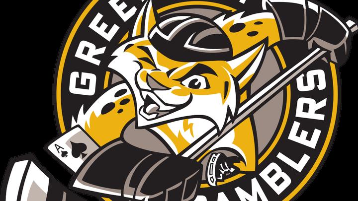 Gamblers restock 'D' in USHL Phase II Draft