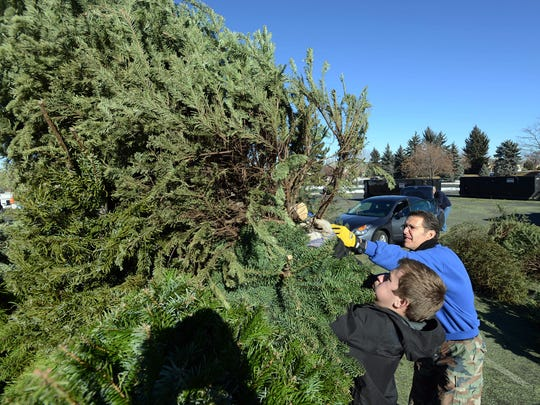 Recycling options for Christmas trees and other holiday-related materials are available around Fort Collins.