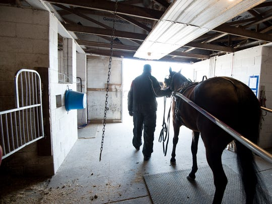 Steven Nason of Freedom, N.H., heads out to the practice track with Geremel Hanover, a standard bread horse, for a exercise session at Track View Farm in Hartly.