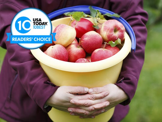 Vote for your favorite pick-your-own apple farm now