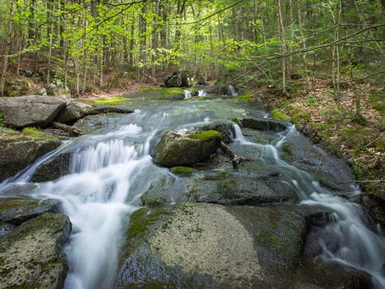 The Little Ascutney Wildlife Management Area is comprised of 656 acres. It is located in the towns of Weathersfield and West Windsor, and includes Little Ascutney Mountain and Pierson's Peak.