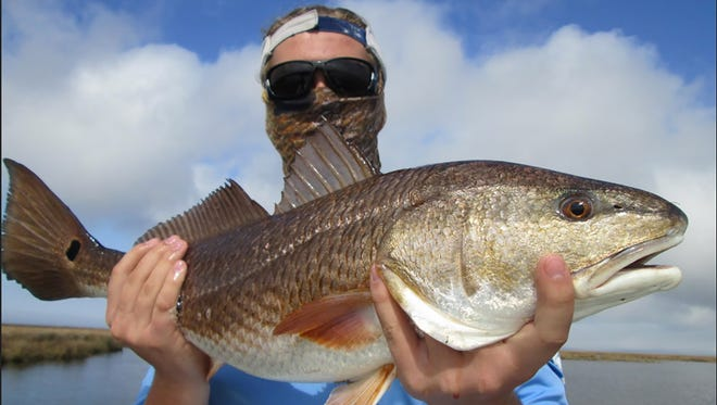 When weather permits, anglers are getting in on a hot redfish bite in the Biloxi Marsh.