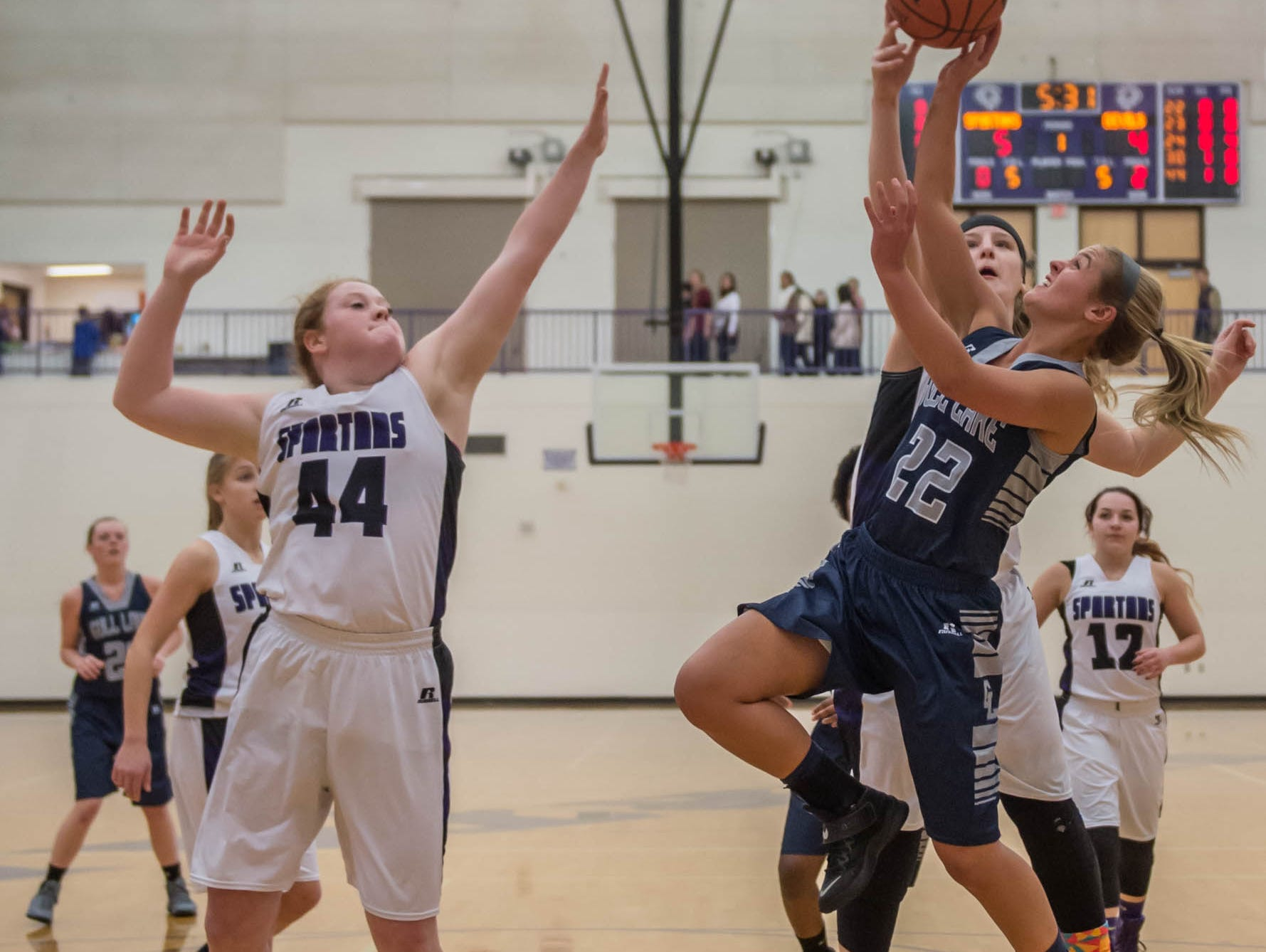 Gull Lakes's Braedan Snow takes her shot against Lakeview in Friday evening's game.
