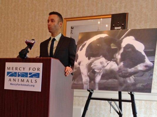 -WRTBrd_12-11-2013_Tribune_1_A008~~2013~12~10~IMG_Animal_Abuse_Dairy_F_3_1_F.jpg