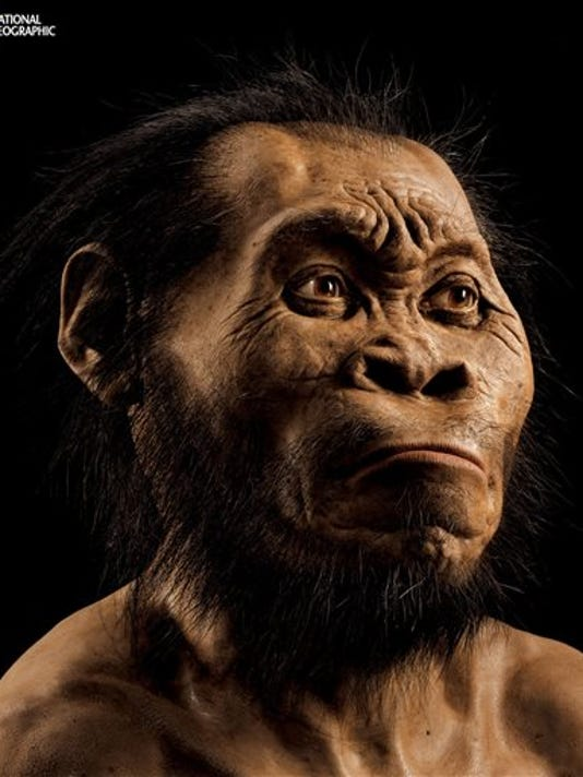 This March 2015 photo provided by National Geographic from their October 2015 issue shows a reconstruction of Homo naledi's face by paleoartist John Gurche at his studio in Trumansburg, N.Y. In an announcement made Thursday, Sept. 10, 2015, scientists say fossils found deep in a South African cave revealed the new member of the human family tree.